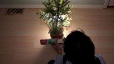 Zu Weihnachten in Wien allein - Tipps für Singles