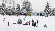 Rodeln in Wien: Alle Orte für den Spaß im Schnee