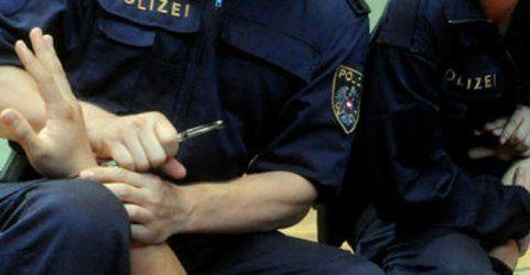 Randalierende Diebe in Wien stahlen Schnaps und Wurst