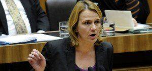Falsche Berufsbezeichnung auf FPÖ-Wahlliste bei der NR-Wahl 2013