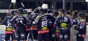 Bulldogs-Duelle gegen Wien und Linz