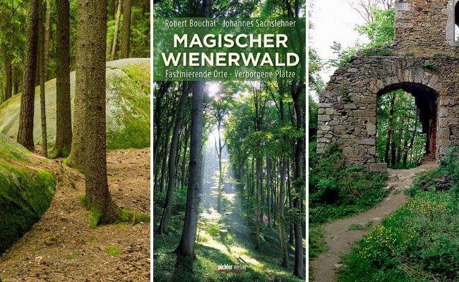 Der Wienerwald hat sein mystisch-romantisches Image nicht umsonst.