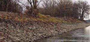 Männliche Wasserleiche in der Donau in Wien-Donaustadt aufgefunden
