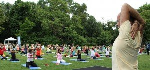 2. Internationaler Yoga-Tag in Wien: Gemeinsames Yoga im Stadtpark