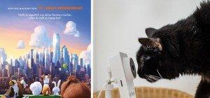 """Haustiere allein daheim: 15×2 Tickets zur Premiere von """"Pets"""" zu gewinnen"""