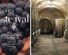 Tasteival in Wien: 20 Craftwines-Winzer präsentieren über 80 Weine