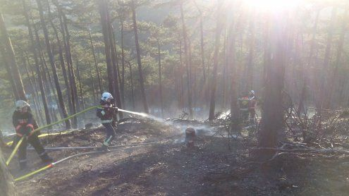 Einsatz bei Waldbrand in Liesing
