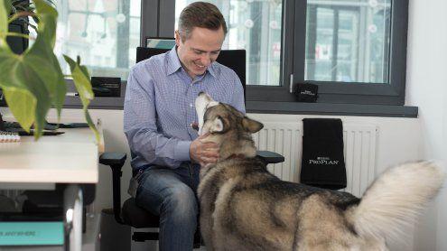 Nimm den Hund mit zur Arbeit-Tag: So klappt's mit Hund im Büro