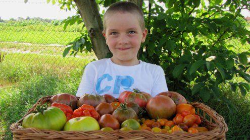 Die Wiener Gemeinschaftsgärten laden zum Tag der offenen Tür