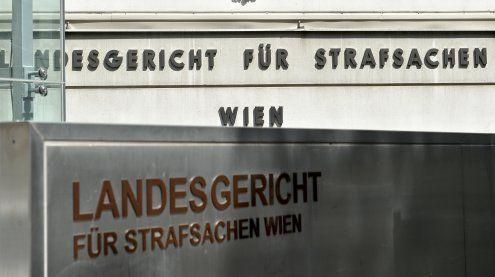 Lebensgefährten mit Messer attackiert: Wienerin vor Gericht