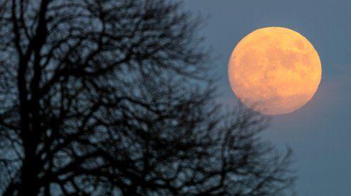 Blue Moon im Jänner: Was es mit Mondfinsternis & Co. auf sich hat