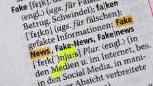 Parteinahme anfällig für Fake-News
