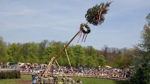 Ausflugstipp: Lainzer Tiergarten in Wien lädt zum Frühlingsfest