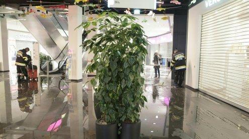 Rekord-Regen in Graz überflutete Einkaufszentrum und Garagen
