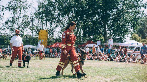 Donauinselfest 2018: Das sind die Programmhighlights am Samstag